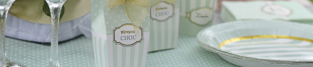 Thème d'anniversaire Monsieur Chou Turquoise pour votre enfant
