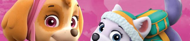 Thème d'anniversaire pat patrouille rose pour votre enfant