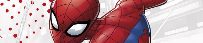 Thème d'anniversaire Spiderman Compostable pour votre enfant