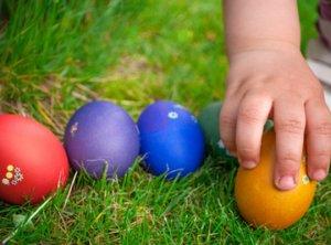 La grande course aux œufs