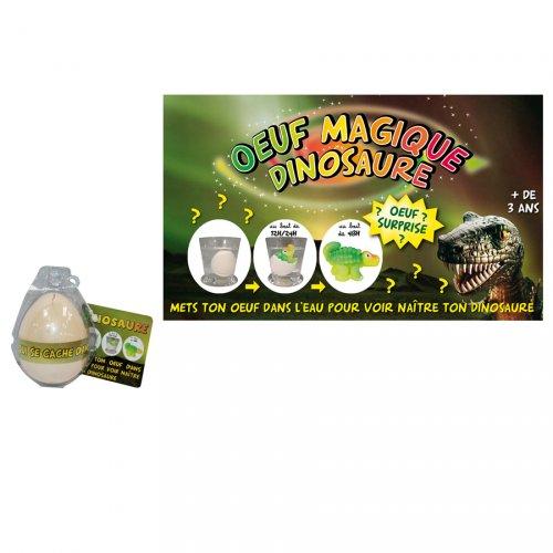 Oeuf Magique Dinosaure