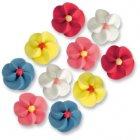 10 Fleurs couleurs vives