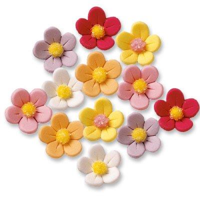 6 Fleurs couleurs pastels