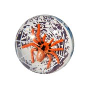 Balle rebondissante araignée
