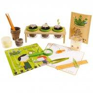 Kit atelier du petit botaniste