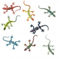 8 lézards