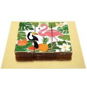 Brownies Puzzle Tropical