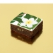 Brownies Puzzle Tropical. n°2