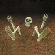 Squelette à Planter (7 pièces) - Plastique