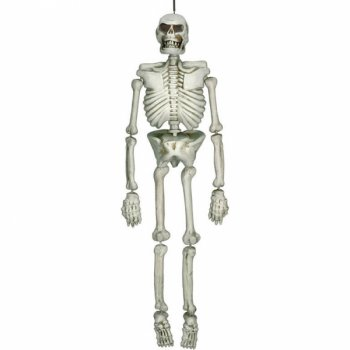 Grand Squelette 3D (1,37 m) - Plastique