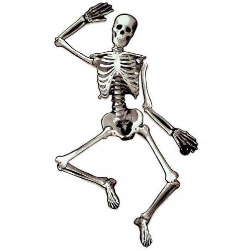 Déco Squelette articulé (1,34 m) - Carton