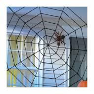 Toile d'Araignée - Corde