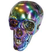 Décoration Crâne Squelette Réfléchissant