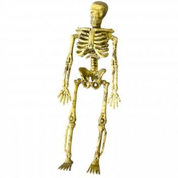 4 Squelettes 3D à Suspendre (14,5 cm)