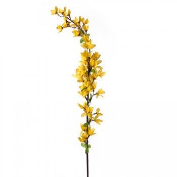 Branche Forsythia décorative