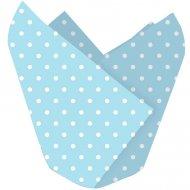12 Caissettes à Cupcakes Pois Blanc/Bleu