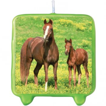 Bougie Cheval Nature