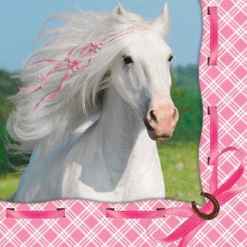 anniversaire mon joli cheval