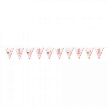 Guirlande Fanions Little Star Baby Girl (3,70 m) - Papier