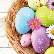 16 Petites Serviettes Matin de Pâques