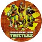 Disque Azyme Tortue Ninja