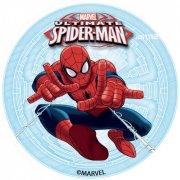 12 Mini Disques Spiderman (4,5 cm) - Azyme
