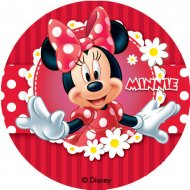 12 Mini-disques Azyme Minnie