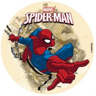 Disque Spiderman (16 cm) - Sucre