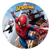 Disque Spiderman & Friends (16 cm) - Sucre