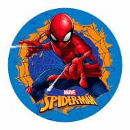 Disque Spiderman - Azyme (20 cm)