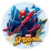 Disque Spiderman - Azyme - sans E171