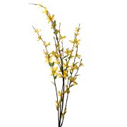 Branche � 4 tiges Forsythia