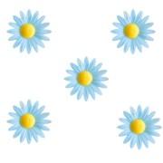 5 Petites Marguerites Bleues à Coeur Jaune (4,5 cm) - Azyme
