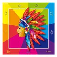Contient : 1 x 20 Serviettes Indien Rainbow