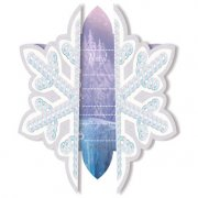 6 Invitations La Reine des Neiges sur glace