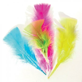 150 Plumes Multicolores
