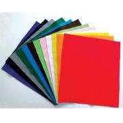 12 Maxi Feuilles en Feutrine Multicolores
