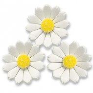 6 Fleurs Marguerites en sucre
