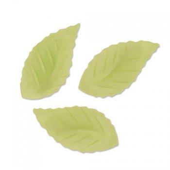 10 Petites Feuilles Vertes en Azyme