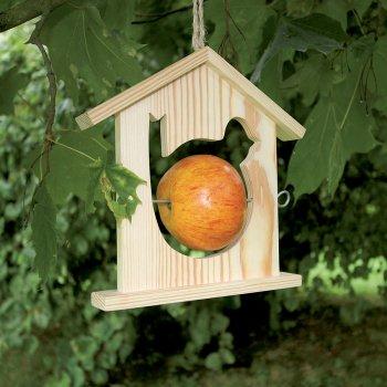 Oiseau - mangeoir pomme