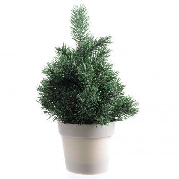 Mini Sapin Givré (20 cm) - Pot Plastique