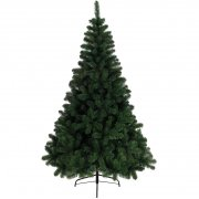 Sapin Eternel Impérial (120 cm)