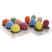 6 Bougies Chauffe-Plat Cactus Rainbow