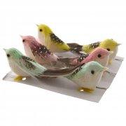 6 Petits Oiseaux à Plumes Pastels (5 cm)