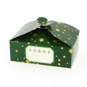 6 Boîtes Cadeaux Vert Sapin Etoile/Uni - Carton