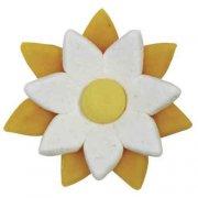 5 Fleurs Bicolores en Pâte d'Amande