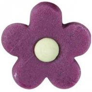 8 Marguerites couleur Pop en pâte d'amande