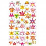 7 Orchidées en azyme