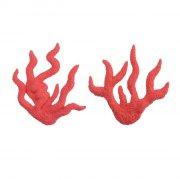 Corail Rouge d�coratif