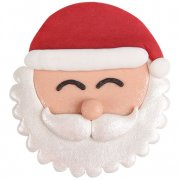 Grande Tête de Père Noël 2D en pâte d
